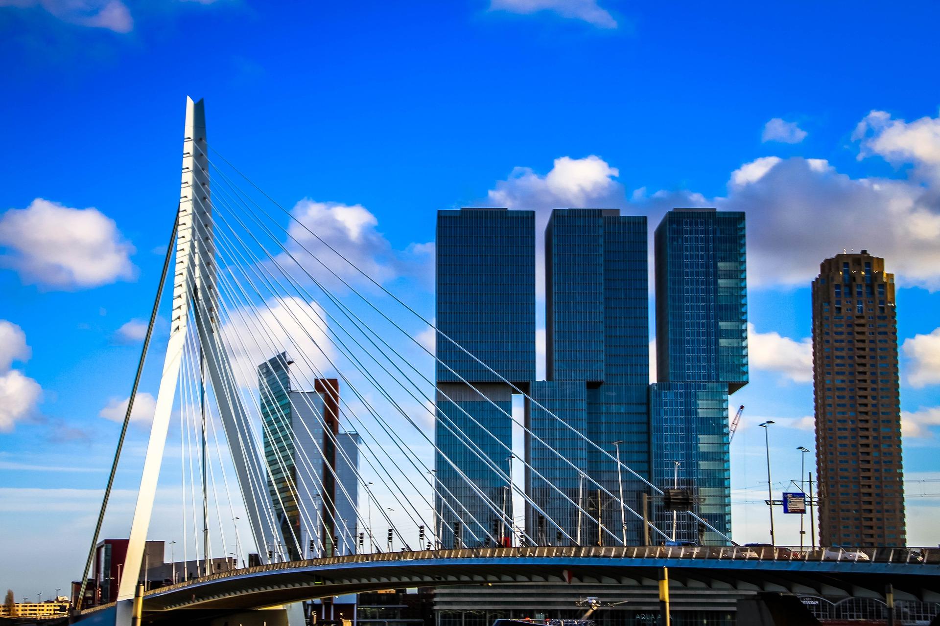 Компания в Нидерландах - фото