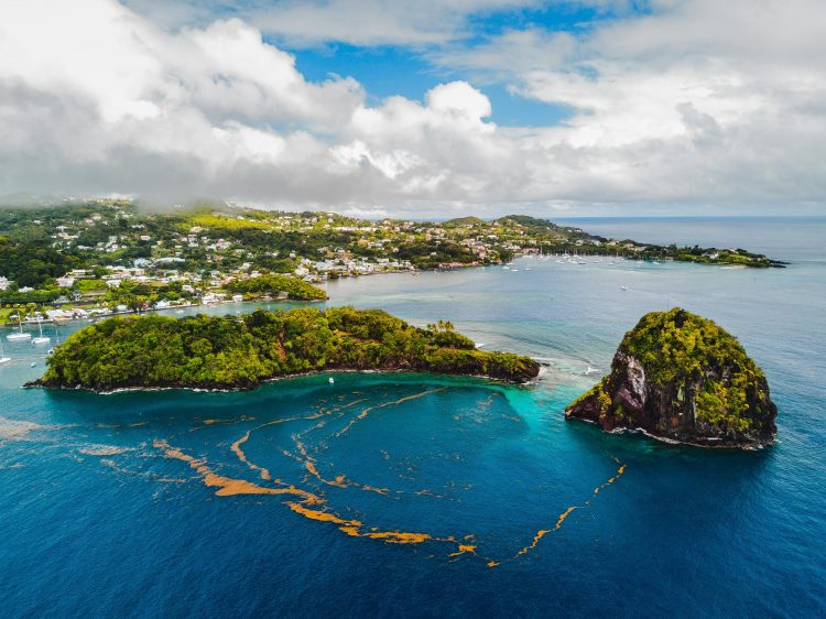 Изображение - Компания на Сент-Винсент и Гренадины