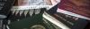Выбираете второй паспорт? Вы не одиноки!