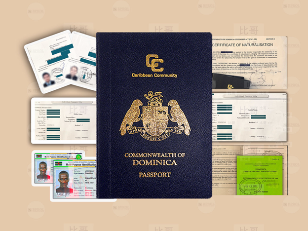 Паспорт Доминики - фото