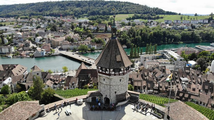Форма Компании в Швейцарии - фото