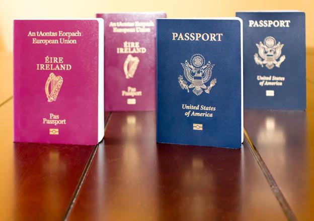 Сколько можно иметь гражданств