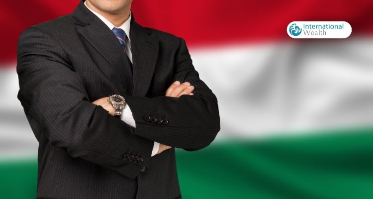 Венгрия - предприниматель картинка