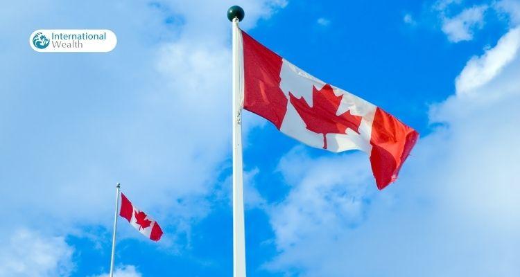 Канадские компании - картинка